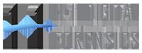 H-11 Digital Forensics Retina Logo